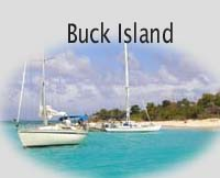 St. Croix's Buck Island Beach is a must do expereience!